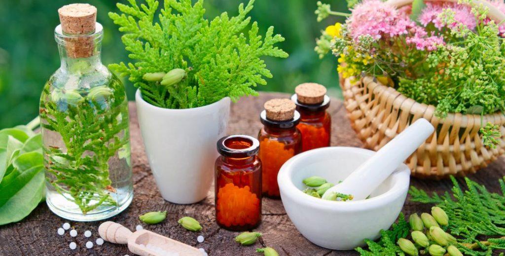 cennik homeopatia a bachova terapia