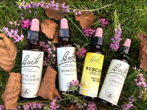 Vyšetrenie Bachovou kvetovou terapiou