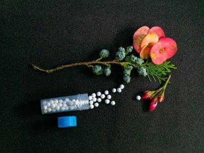 online kurz homeopatie